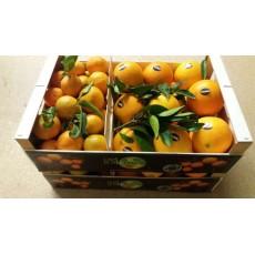 Caixa Mixta Taronja Navel Late /Mandarina Gold Nugget 15Kg