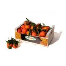 Mandarina Gold Nugget 15Kg
