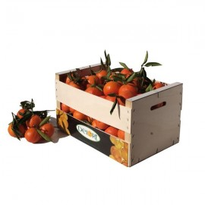 Mandarinas Clemennules 15 Kg. aprox.