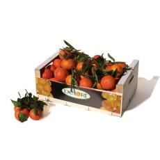 Mandarinas Marisol