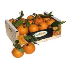 Naranjas Navelinas de 10 Kg Aprox.