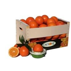 Naranjas para zumo de 15 Kg Aprox.