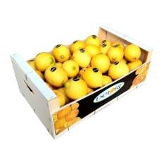 Limones 10 Kg Aprox.